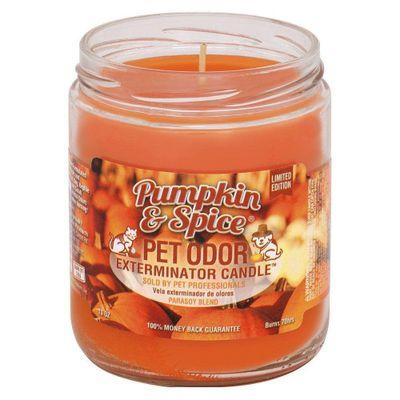 Candela-Eliminadora-Olores-Pumpkin---Sp---Pet-Odor-Exterminator
