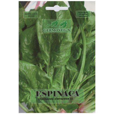 Semilla-De-Espinaca---Germovegs