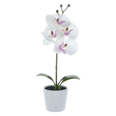 Orquidea-Blanca-Con-Pote-30.5Cm---Concepts