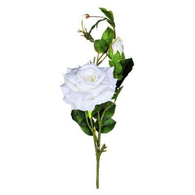 Ramo-De-Rosas--Blanca-80-Cm