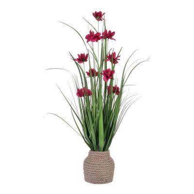 Grama-Con-Flor-Rosa-Purpura-En-Pote-75-Cm---Concepts