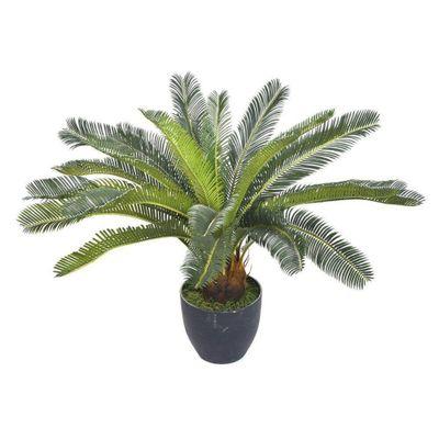 Planta-C--Pote-60Cm