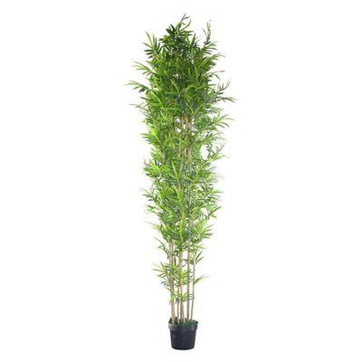 Planta-C-Pote-310Cm