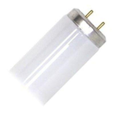 Tubo-Fluorescente-T10-20W-6500K-24---Sylvania