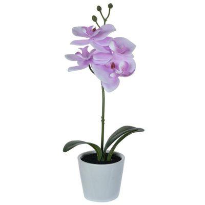 Orquidea-Con-Pote-30.5Cm---Concepts
