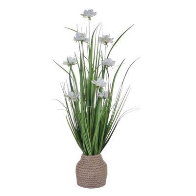 Grama-Con-Flor-Rosa-Blanca-En-Pote-75-Cm---Concepts