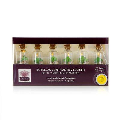 Botellas-Con-Planta-Y-Luz-Led-Set-6---Flor-De-Liz