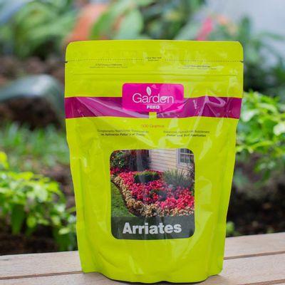 Fertilizante-Arriates-500G