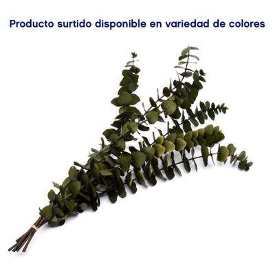Eucalipto-Brillante-6-Tallos---Kotzijal