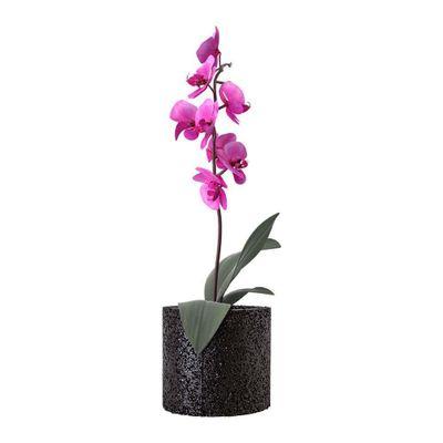 Maceta-Para-Orquidea-Circular-Negra---Greentec-3r