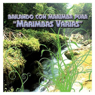 Disco-Compacto-Bailando-Con-Marimba-Pura-Marimba-Marimbas-Varias-90069-2---Jaguar-Record